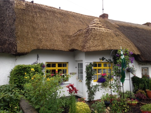 Thatched Blog4