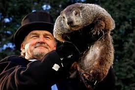 Groundhog Blog1